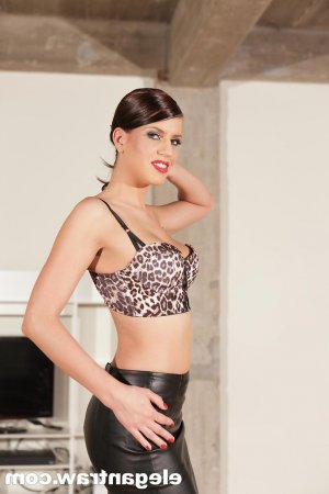 Traicy ts escorts in Ossining